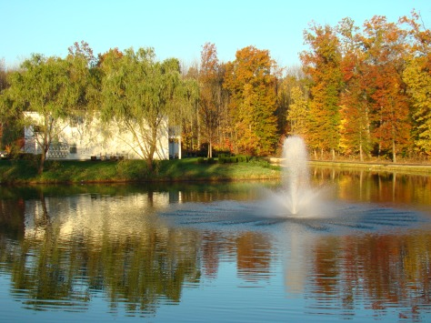 My pond in Autumn    Photo by Barbara Mattio