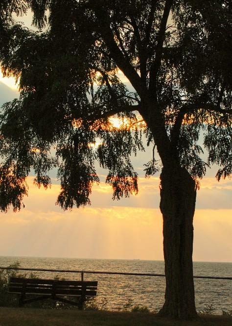 Sunset.  Photo by Barbara Mattio