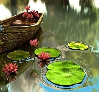 watergardenpicnic