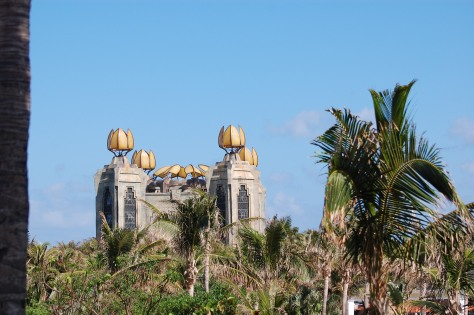 Bahama beauty