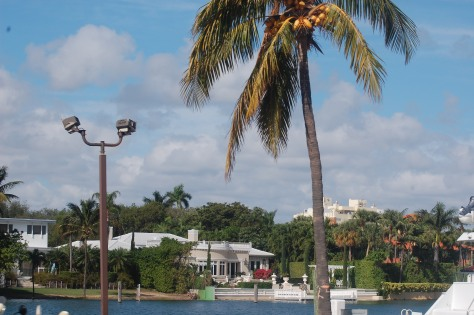 Just a beautiful day in  FloridaPhoto by Barbara Mattio