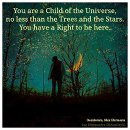 If you are a child of the Universe