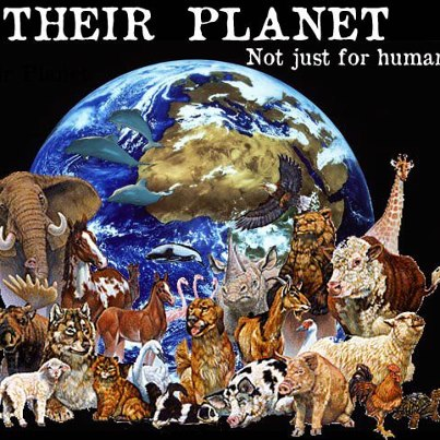We share this planet with the wild things!!