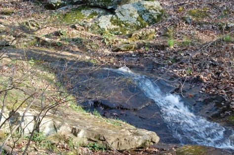 Forest stream in the Blue Ridge Mountains. Photograph taken and copyrighted by Barbara Mattio