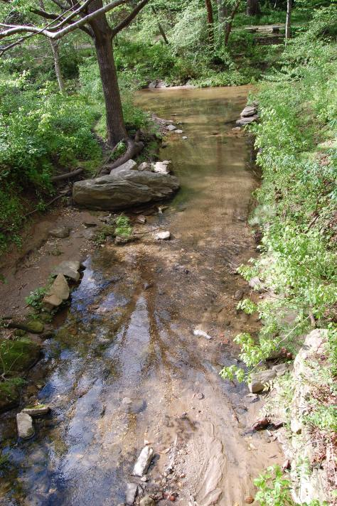 Flowing mountain brook