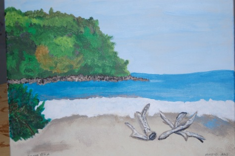 Costa Rica; Acrylic paint by Barbara Mattio 2011