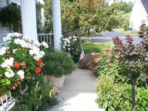 Garden grown and photographed by Barbara Mattio. Copyright 2009