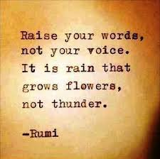 Do not raise your voice