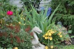Late garden photographed and copyrighted 2013