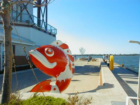 The dock, Dobbins Landing