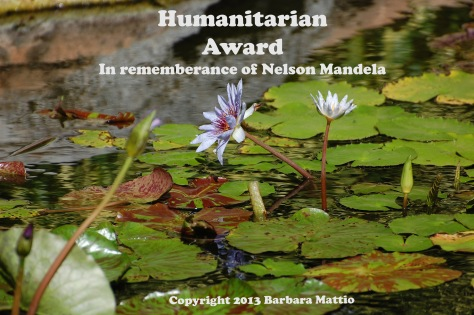 HumanitarianAward copy