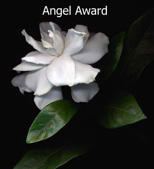 angel-Award_edited-1