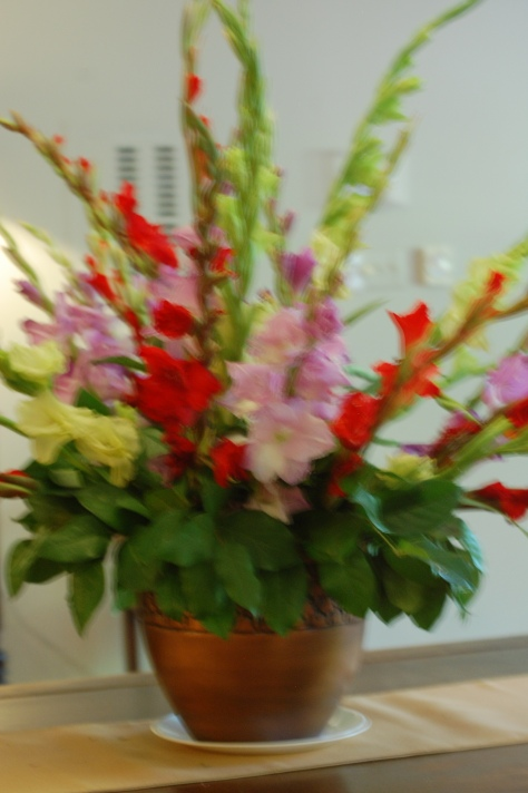 Flowers photographed and copyrighted by Barbara Mattio 2014