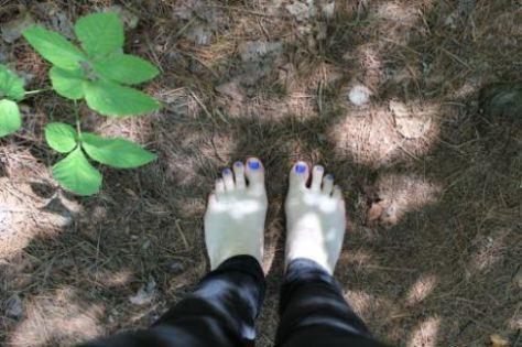 feet,toes,,ground,Woods,North Of Toronto, Ontario