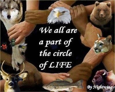 CircleLife