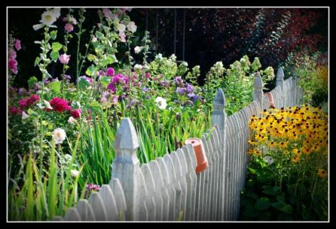 fenceandflowers