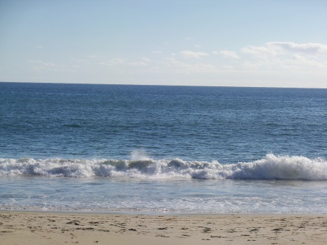 Laguna beach. Photograph and copyright by Amy Halperin