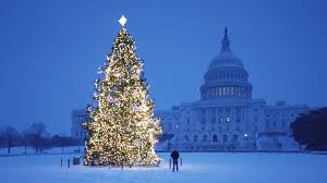 lighted Christmas tree in Washington DC with Capitol building in background
