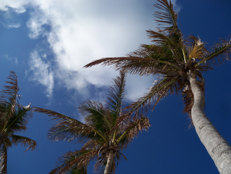 I wish you all blue skies and gentle breezes. Photograph and copyright by Barbara Mattio, 2013