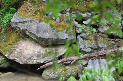 River rock. Photograph and copyright by Barbara Mattio, 2016