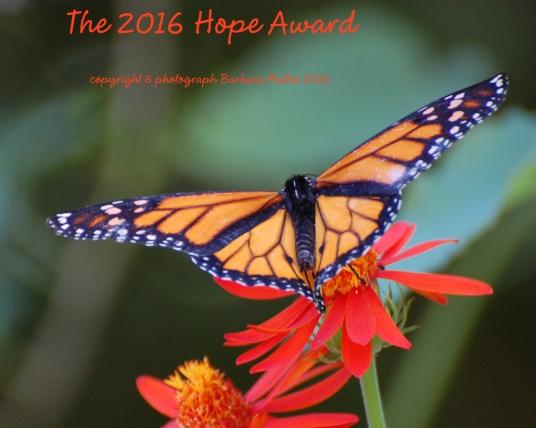 2016-hope-award