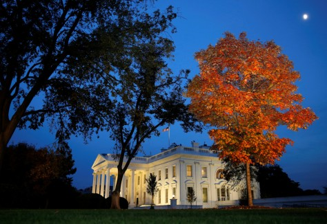 A tree is awash in autumn color as the moon rises over the White House on election night, November 08. REUTERS
